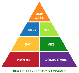 Bear Diet Type Food Pyramid