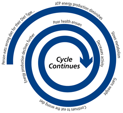 The Cycle of Eating Wrong for Your Diet Type