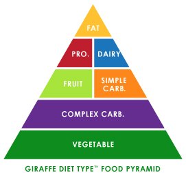 Giraffe Diet Type Food Pyramid