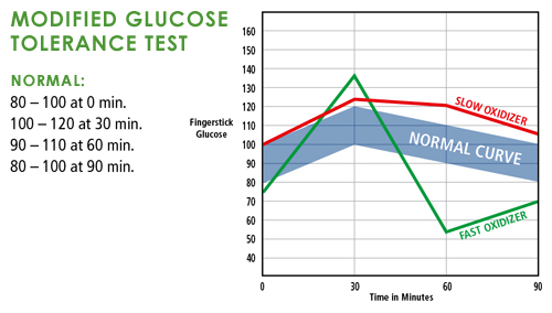 Modified Glucose Tolerance Blood Test Graph